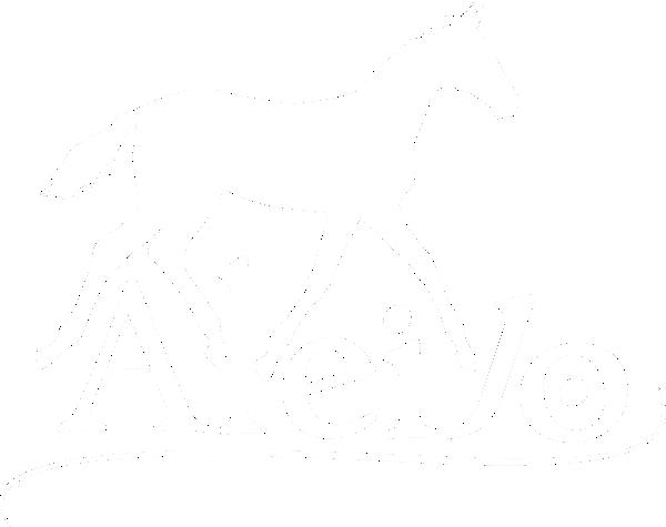 Eleveur de chevaux de sport